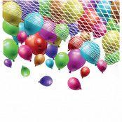 Ballongnät Stort
