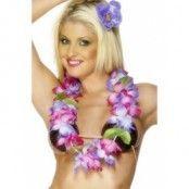 Hawaii-lei (girlang) lila och rosa