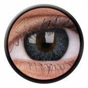 Eyelushlinser Gray