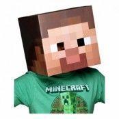Minecraft Steve Huvud