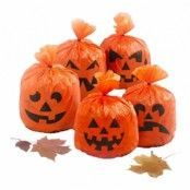 Halloween Pumpapåsar