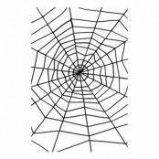 Gigantiskt Spindelnät Svart